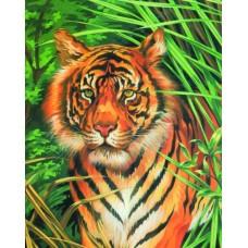 Mammut Festés számok után Tigris