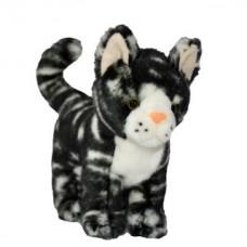 Plüss amerikai rövid szőrű cica